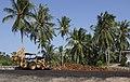Tamalang Kudat Sabah FFB-Collecting-Centre-02.jpg