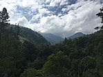 Taman nasional gunung lauser. Aceh.jpg