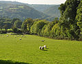 Tamar valley from Luscombedown 2.jpg