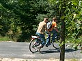 Tandem (bike).jpg
