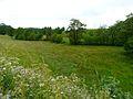 Taraffet D149 nord Picherande vallée.JPG