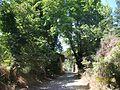 Tarihi değirmen 1 longuner - panoramio.jpg