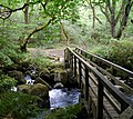 Teign footbridge - geograph.org.uk - 411270.jpg