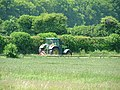 Tending the crops - geograph.org.uk - 16875.jpg