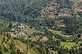 Terrace Farming in Nepal in Rakathum VDC-0376.jpg