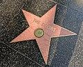 The Doors Hollywood Star.jpg