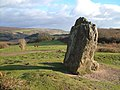 The Longstone - geograph.org.uk - 1412918.jpg