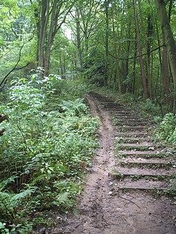 "The Weardale way "" Killer Hill "" - geograph.org.uk - 247448"