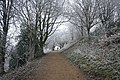 The disabled path to Black Hill - geograph.org.uk - 1100632.jpg