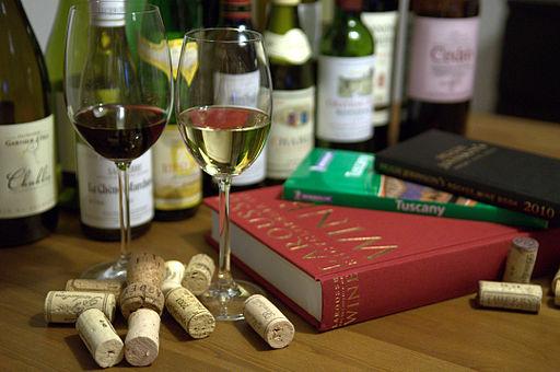 The enjoyment of wine (4455437234)