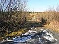 The last of the ice, Meenbane - geograph.org.uk - 1749432.jpg
