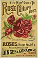 The new guide to rose culture (16998208022).jpg