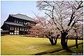 Todaiji Temple (30885103).jpeg
