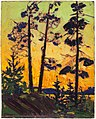 Tom Thomson, Pine Trees at Sunset.jpg