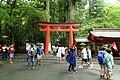 Torii - Hakone-jinja - Hakone, Japan - DSC05717.jpg