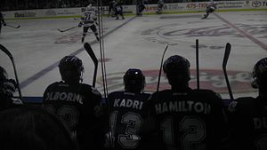 Toronto Marlies - Joe Colborne, Nazem Kadri and Ryan Hamilton on the bench vs. the Rochester Americans