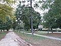 Town park, Svilajnac 2.JPG