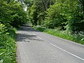 Tree lined road east of Glenlochar - geograph.org.uk - 444248.jpg