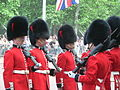Trooping the Colour 2006 - P1110258 (169173042).jpg