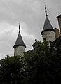 Troyes (10) Hôtel de Vauluisant 04.JPG