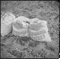 Tule Lake Relocation Center, Newell, California. Sacks which are being filled with newly dug potato . . . - NARA - 536388.tif