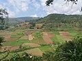 Tulungrejo, Bumiaji, Batu City, East Java, Indonesia - panoramio (1).jpg