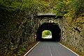 Tunnel_Urtelstein_Ostportal.JPG