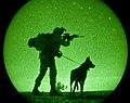 Two Devil Dogs (8032591065).jpg