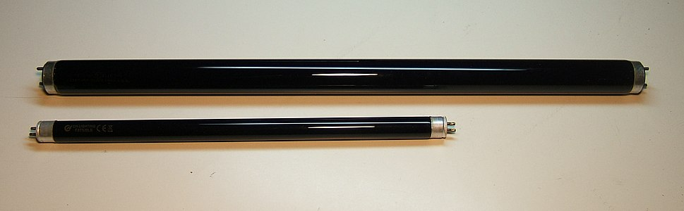 Two black light fluorescent tubes
