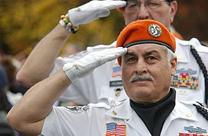 English: Two Vietnam veterans salute as the co...