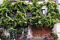 Un joli coin de Paris, août 2015.jpg