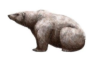 Ursus maritimus tyrannus - Hypothetical restoration
