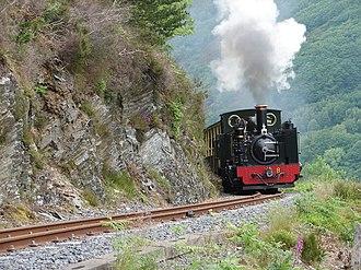 Vale of Rheidol Railway - Image: Vale of Rheidol Railway geograph.org.uk 460576