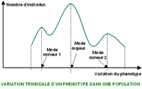 Variation phénotypique Courbe trimodale.PNG