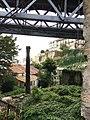 Vegetación en la ciudad. Porto (Portugal). (49824800586).jpg