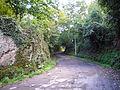 Vejano - via della Fontana 1140852.JPG