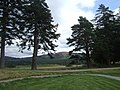 View NE from Braemar Castle - geograph.org.uk - 1435903.jpg