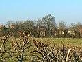 View from Garsington Drive, near Blunsdon St Andrew, Swindon - geograph.org.uk - 694372.jpg