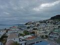 View of Oriental Bay.jpg