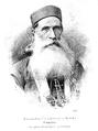 Visarion Ljubisa 1884 Vilimek.png