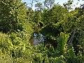 Vitrupes ieleja Salacgrīvas novadā (2).jpg