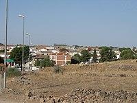 Viveros vista gral.jpg