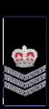 Wa-police-senior-sergeant.png