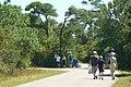 Walking to the Beach at Chincoteague (6106586478).jpg