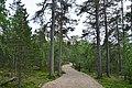 Walking trail, Inari, Finland (9) (36637650106).jpg