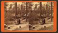 Washing camp, by J. A. Palmer 3.jpg