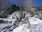 File:Waterdawn Webster Falls in Winter7.jpg