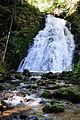 Waterfall naer Todtmoos with huge waterquantities - panoramio.jpg