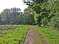 Weg - panoramio (19).jpg