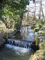 Weir on a tributary of the River Stour - geograph.org.uk - 140093.jpg